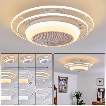 Sarasota wentylator sufitowy LED Biały, 3-punktowe, Zdalne sterowanie