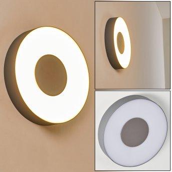Zewnętrzny kinkiet Felsted LED Srebrny, 1-punktowy