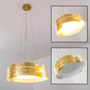 Novara lampa wisząca Złoty, 3-punktowe