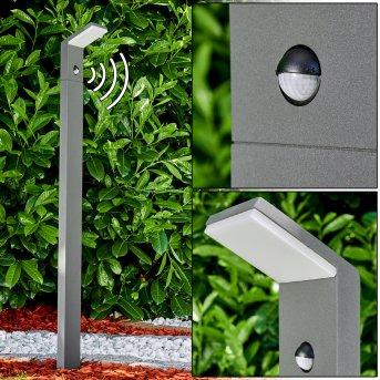 Korup Oświetlenie ścieżek LED Antracytowy, 1-punktowy, Czujnik ruchu