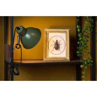 Lucide MOYS lampa z klipsem Zielony, 1-punktowy