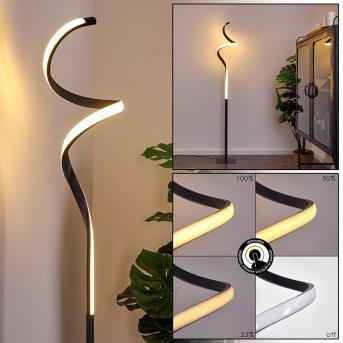 Pitasch Lampa Stojąca LED Czarny, 1-punktowy