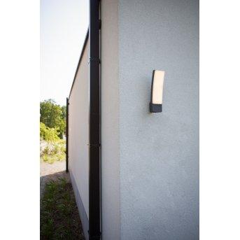 Lutec Kira Zewnętrzny kinkiet LED Antracytowy, 1-punktowy