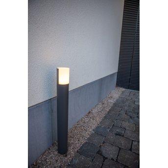 Lutec Cyra Oświetlenie ścieżek LED Antracytowy, 1-punktowy