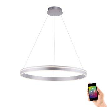 Paul Neuhaus Q-VITO Lampa Wisząca LED Stal nierdzewna, 1-punktowy, Zdalne sterowanie