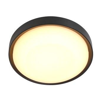 Steinhauer Fuga Lampa Sufitowa zewnętrzna LED Czarny, 1-punktowy