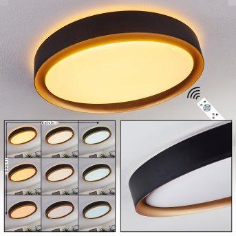 Beade Lampa Sufitowa LED Czarny, Złoty, 1-punktowy, Zdalne sterowanie