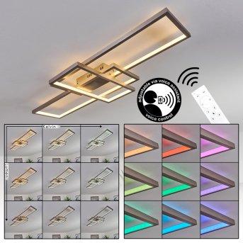 Momahaki Lampa Sufitowa LED Nikiel matowy, 1-punktowy, Zdalne sterowanie