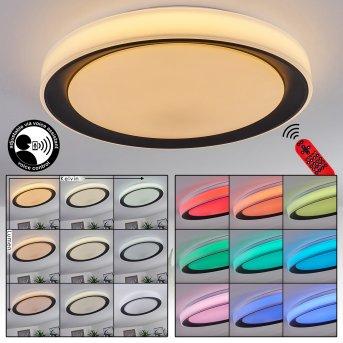 Gladstone Lampa Sufitowa LED Czarny, Biały, 1-punktowy, Zdalne sterowanie