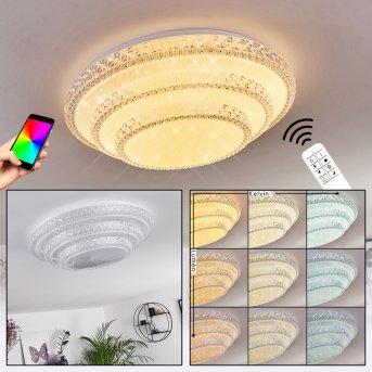 Roseto Lampa Sufitowa LED Biały, Przezroczysty, 1-punktowy, Zdalne sterowanie