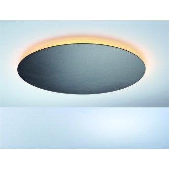 Escale BLADE Lampa Sufitowa LED Antracytowy, 1-punktowy