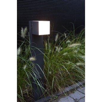 Lutec CUBA Oświetlenie ścieżek LED Antracytowy, 1-punktowy