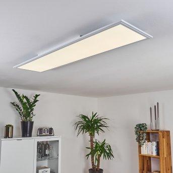 Pau Lampa Sufitowa LED Biały, 1-punktowy