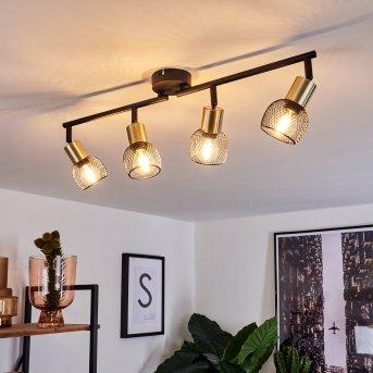 Cairns Lampa Sufitowa Czarny, Złoty, 4-punktowe