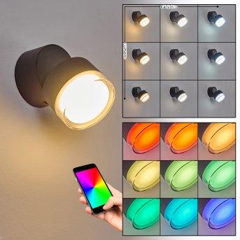 Papagayos Zewnętrzny kinkiet LED Antracytowy, 1-punktowy, Zmieniacz kolorów