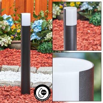 Baulund Oświetlenie ścieżek LED Czarny, 1-punktowy