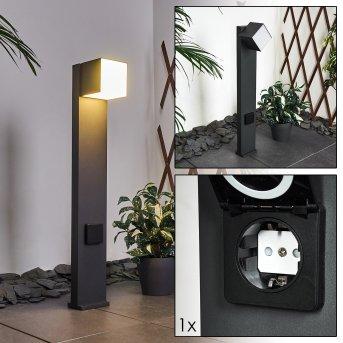 Swanek Oświetlenie ścieżek LED Czarny, 1-punktowy
