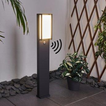 Skove Oświetlenie ścieżek LED Antracytowy, 1-punktowy, Czujnik ruchu