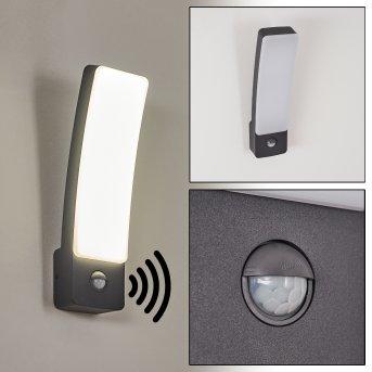 Maseru Zewnętrzny kinkiet LED Antracytowy, 1-punktowy, Czujnik ruchu