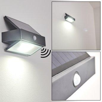 Wiborg Zewnętrzny kinkiet LED Antracytowy, 1-punktowy, Czujnik ruchu