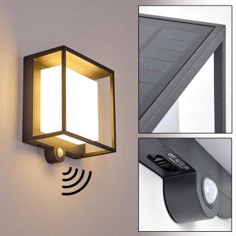 Lansing Zewnętrzny kinkiet LED Antracytowy, 1-punktowy, Czujnik ruchu