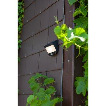 Lutec TRY Lampy solarne LED Antracytowy, 1-punktowy, Czujnik ruchu