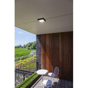 Lutec Helena Lampa Sufitowa zewnętrzna LED Antracytowy, 1-punktowy