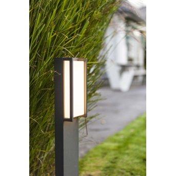 Lutec QUBO Oświetlenie ścieżek LED Antracytowy, 1-punktowy, Zmieniacz kolorów