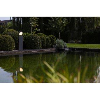 Lutec Fele Oświetlenie ścieżek LED Antracytowy, 1-punktowy