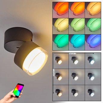 Papagayos Lampa Sufitowa zewnętrzna LED Antracytowy, Biały, 1-punktowy, Zmieniacz kolorów