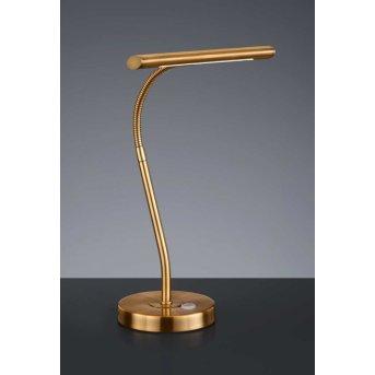Trio CURTIS lampa stołowa LED Mosiądz, 1-punktowy