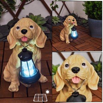 Sofie Lampa solarna LED Czarny, Brązowy, 1-punktowy