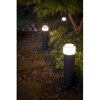 Philips Hue Ambiance White & Color Calla oświetlenie ścieżek zestaw podstawowy LED Czarny, 1-punktowy, Zmieniacz kolorów