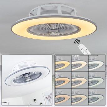 Marmorta wentylator sufitowy LED Siwy, Biały, 1-punktowy, Zdalne sterowanie