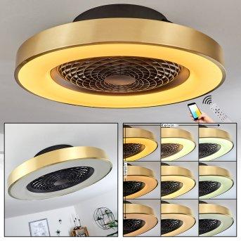 Penon wentylator sufitowy LED Czarny, 1-punktowy, Zdalne sterowanie