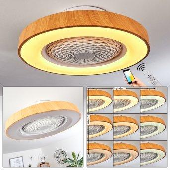 Penon wentylator sufitowy LED Biały, 1-punktowy, Zdalne sterowanie