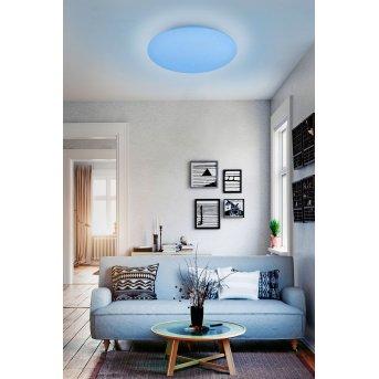 Reality WIZ FARA Lampa Sufitowa LED Biały, Efekt brokatowy, 1-punktowy, Zmieniacz kolorów