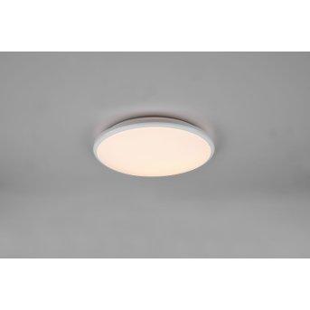 Reality Limbus Lampa Sufitowa LED Biały, 1-punktowy