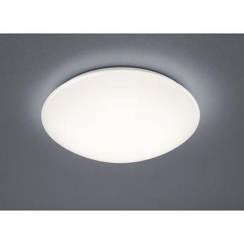 Trio Paolo Lampa Sufitowa LED Biały, 1-punktowy