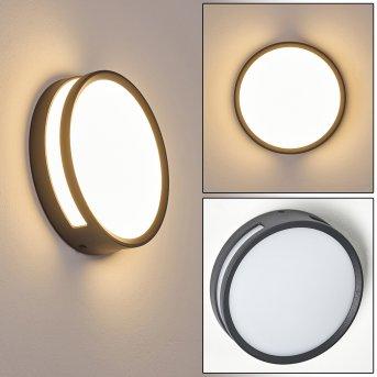 Chiavari Zewnętrzny kinkiet LED Antracytowy, 1-punktowy
