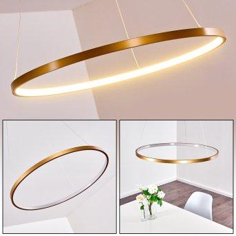 Canisteo Lampa Wisząca LED Złoty, 1-punktowy
