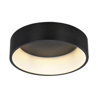 Lampa Sufitowa WOFI PURE LED Czarny, 1-punktowy