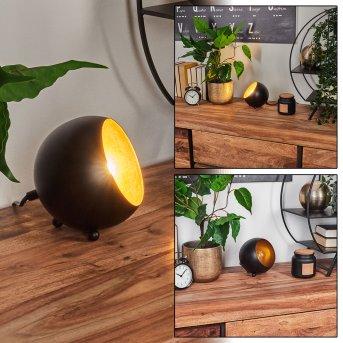 Hajo Lampa stołowa Czarno-złoty, 1-punktowy