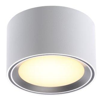 Nordlux FALLON Lampa Sufitowa Stal nierdzewna, 1-punktowy