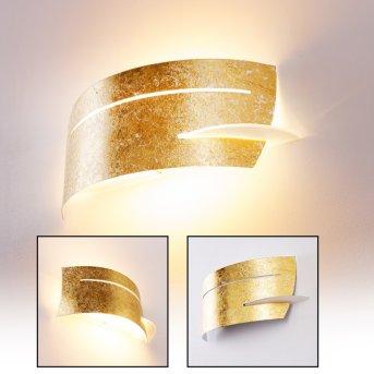 Novara lampa ścienna Złoty, 1-punktowy