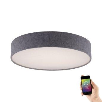 Paul Neuhaus Q-KIARA Lampa Sufitowa LED Siwy, 1-punktowy, Zdalne sterowanie