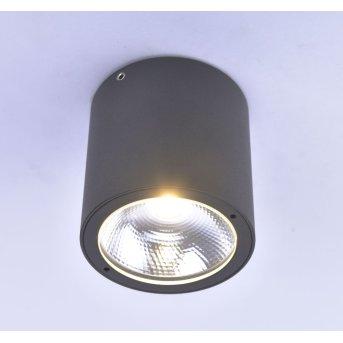 Paul Neuhaus GEORG Lampa Sufitowa LED Antracytowy, 1-punktowy