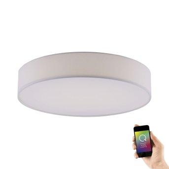 Paul Neuhaus Q-KIARA Lampa Sufitowa LED Biały, 1-punktowy, Zdalne sterowanie