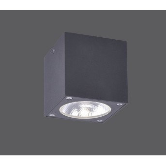 Paul Neuhaus GEORG Lampa Sufitowa LED Antracytowy, 1-punktowy