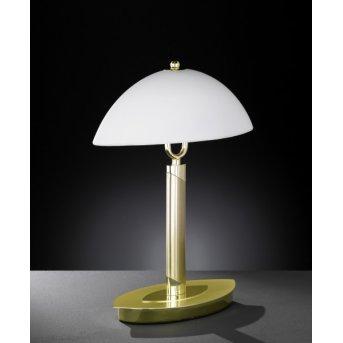 Wofi NEWTON Lampa stołowa Mosiądz, 2-punktowe